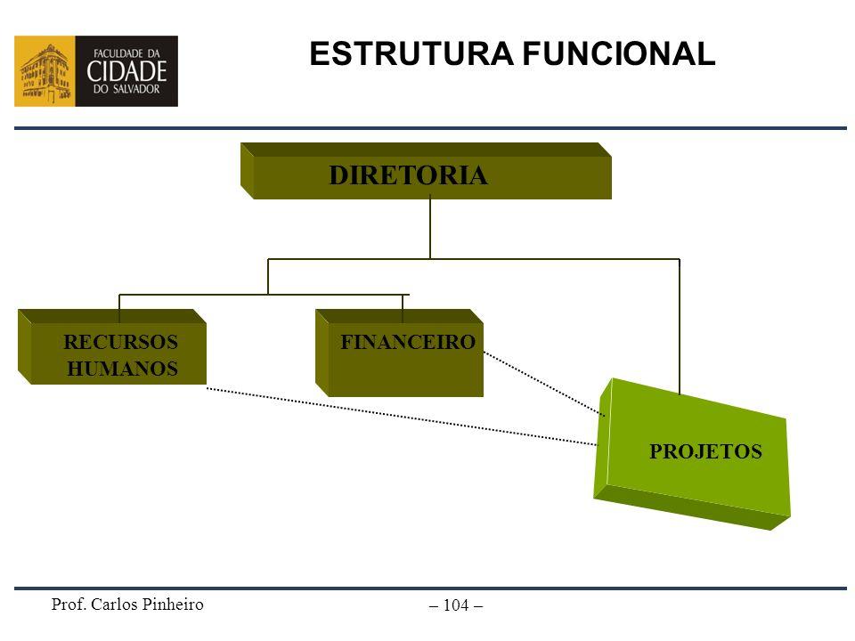 Prof. Carlos Pinheiro – 104 – DIRETORIA PROJETOS RECURSOS HUMANOS FINANCEIRO ESTRUTURA FUNCIONAL