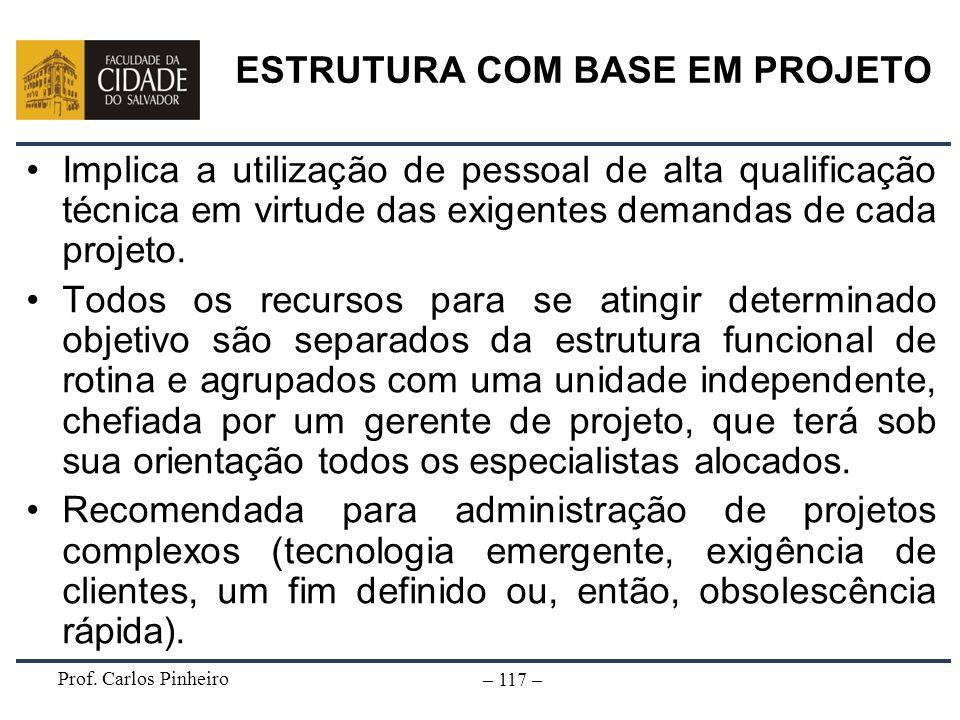 Prof. Carlos Pinheiro – 117 – Implica a utilização de pessoal de alta qualificação técnica em virtude das exigentes demandas de cada projeto. Todos os