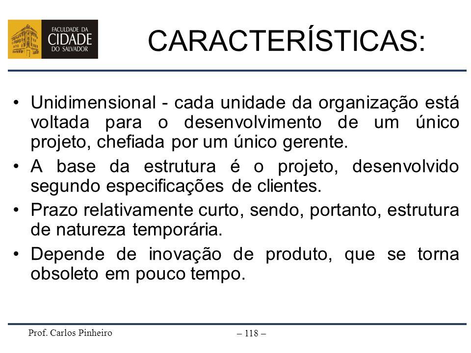 Prof. Carlos Pinheiro – 118 – CARACTERÍSTICAS: Unidimensional - cada unidade da organização está voltada para o desenvolvimento de um único projeto, c