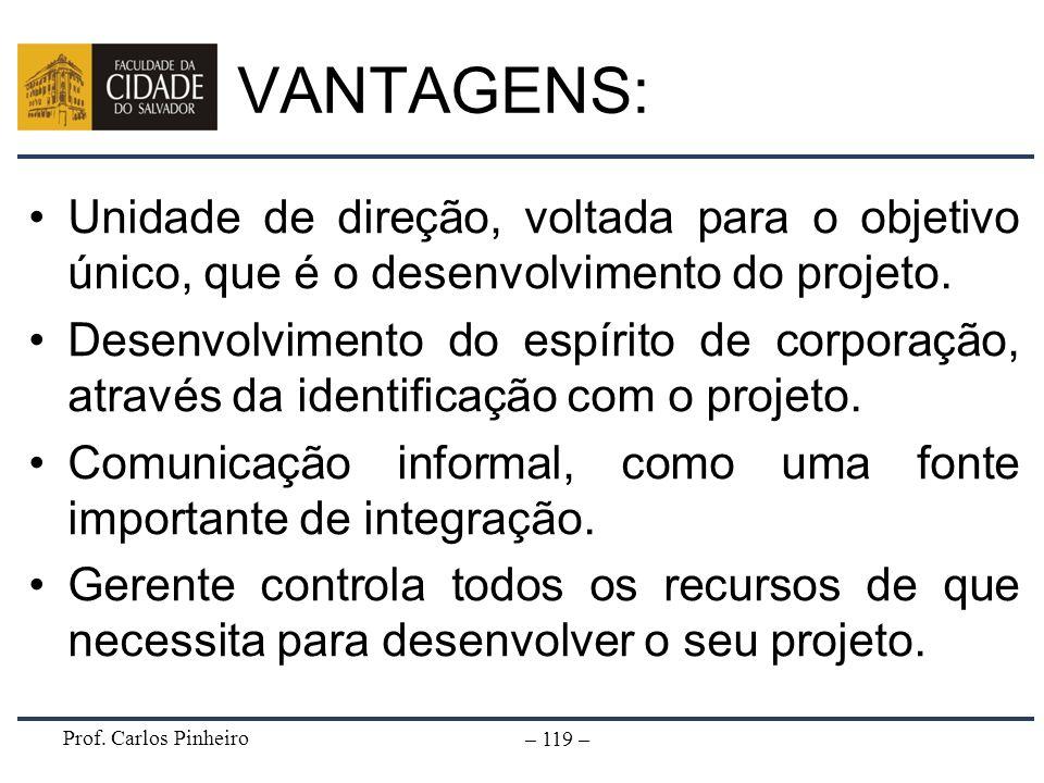 Prof. Carlos Pinheiro – 119 – VANTAGENS: Unidade de direção, voltada para o objetivo único, que é o desenvolvimento do projeto. Desenvolvimento do esp