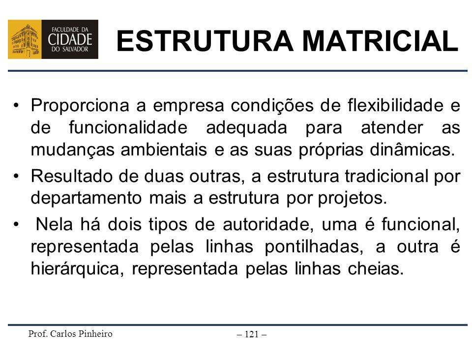 Prof. Carlos Pinheiro – 121 – ESTRUTURA MATRICIAL Proporciona a empresa condições de flexibilidade e de funcionalidade adequada para atender as mudanç