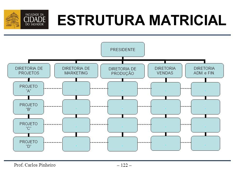 Prof. Carlos Pinheiro – 122 – ESTRUTURA MATRICIAL