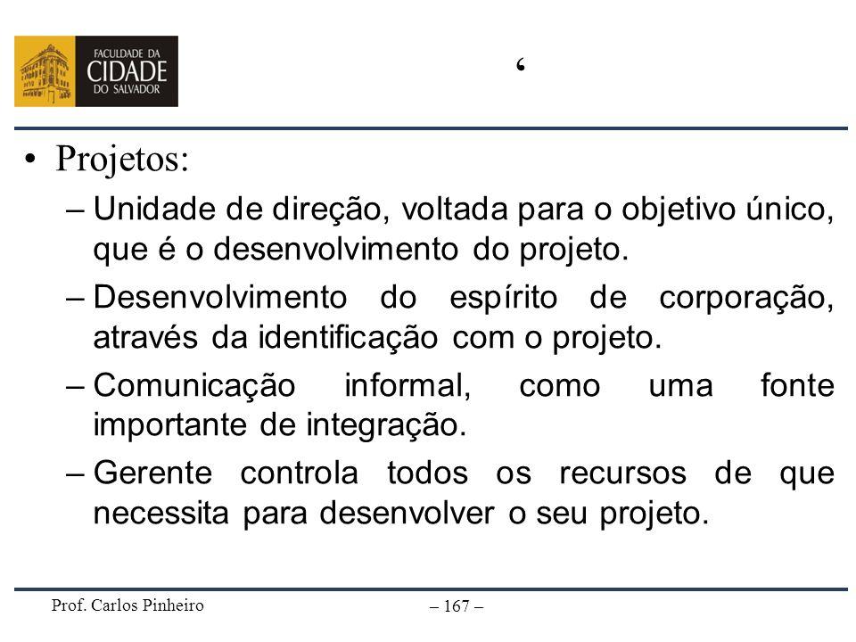 Prof. Carlos Pinheiro – 167 – Projetos: –Unidade de direção, voltada para o objetivo único, que é o desenvolvimento do projeto. –Desenvolvimento do es