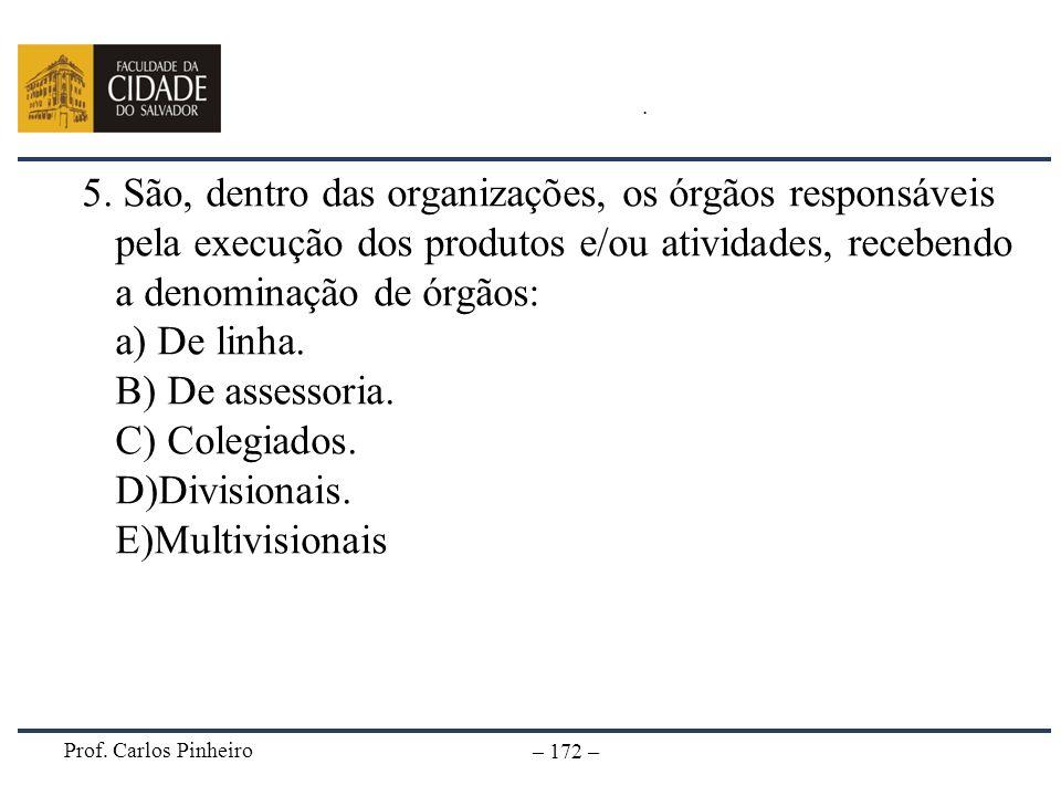 Prof. Carlos Pinheiro – 172 –. 5. São, dentro das organizações, os órgãos responsáveis pela execução dos produtos e/ou atividades, recebendo a denomin