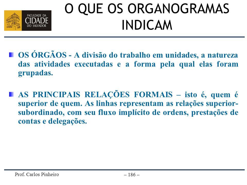 Prof. Carlos Pinheiro – 186 – O QUE OS ORGANOGRAMAS INDICAM OS ÓRGÃOS - A divisão do trabalho em unidades, a natureza das atividades executadas e a fo