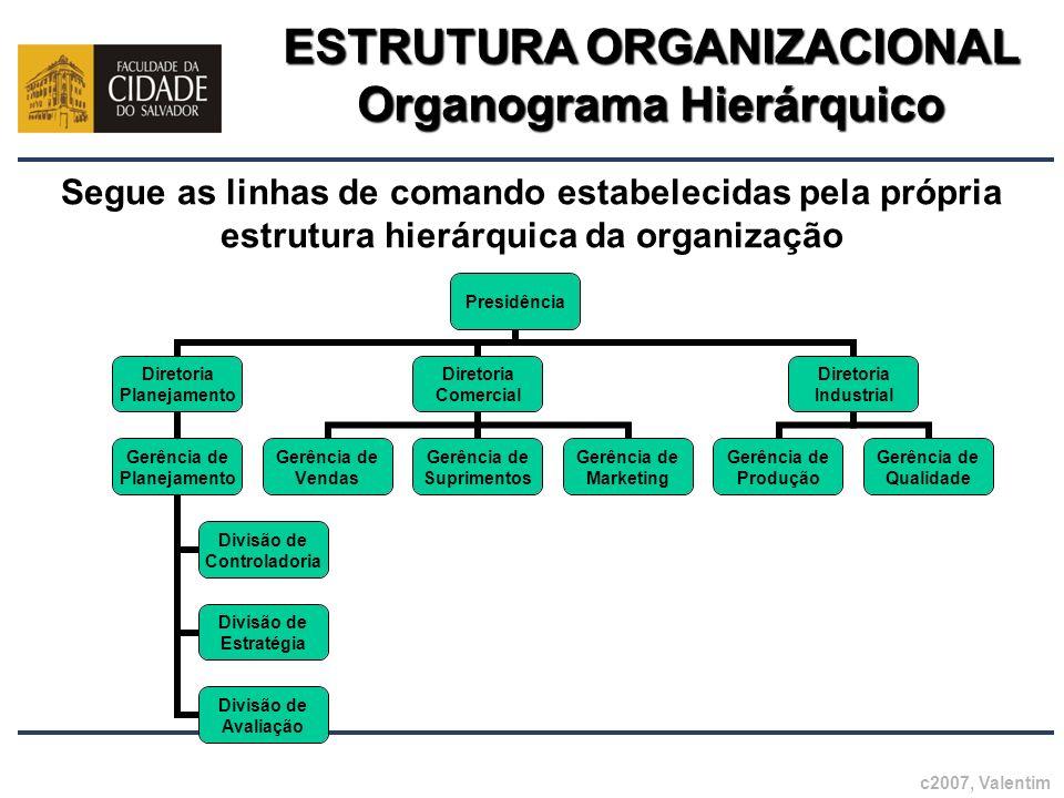 ESTRUTURA ORGANIZACIONAL Organograma Hierárquico c2007, Valentim Segue as linhas de comando estabelecidas pela própria estrutura hierárquica da organi