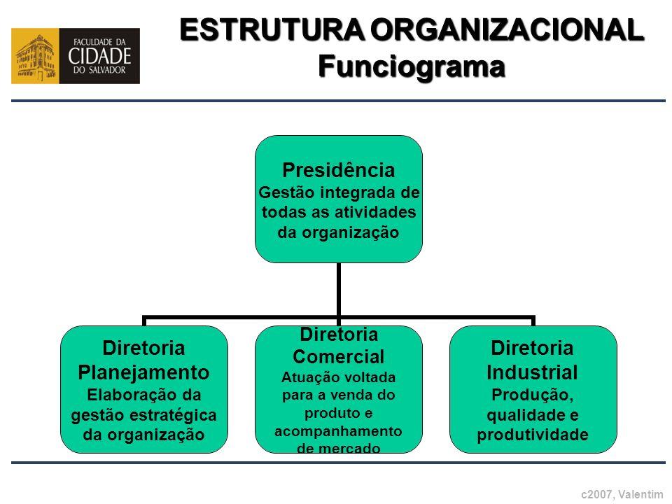 ESTRUTURA ORGANIZACIONAL Funciograma Presidência Gestão integrada de todas as atividades da organização Diretoria Planejamento Elaboração da gestão es
