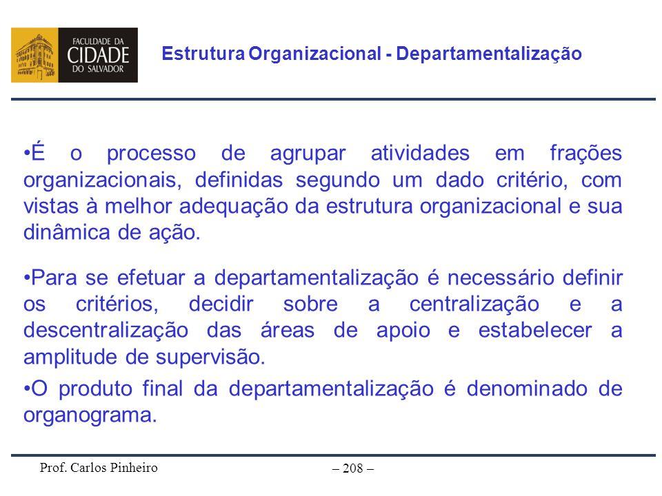 Prof. Carlos Pinheiro – 208 – É o processo de agrupar atividades em frações organizacionais, definidas segundo um dado critério, com vistas à melhor a