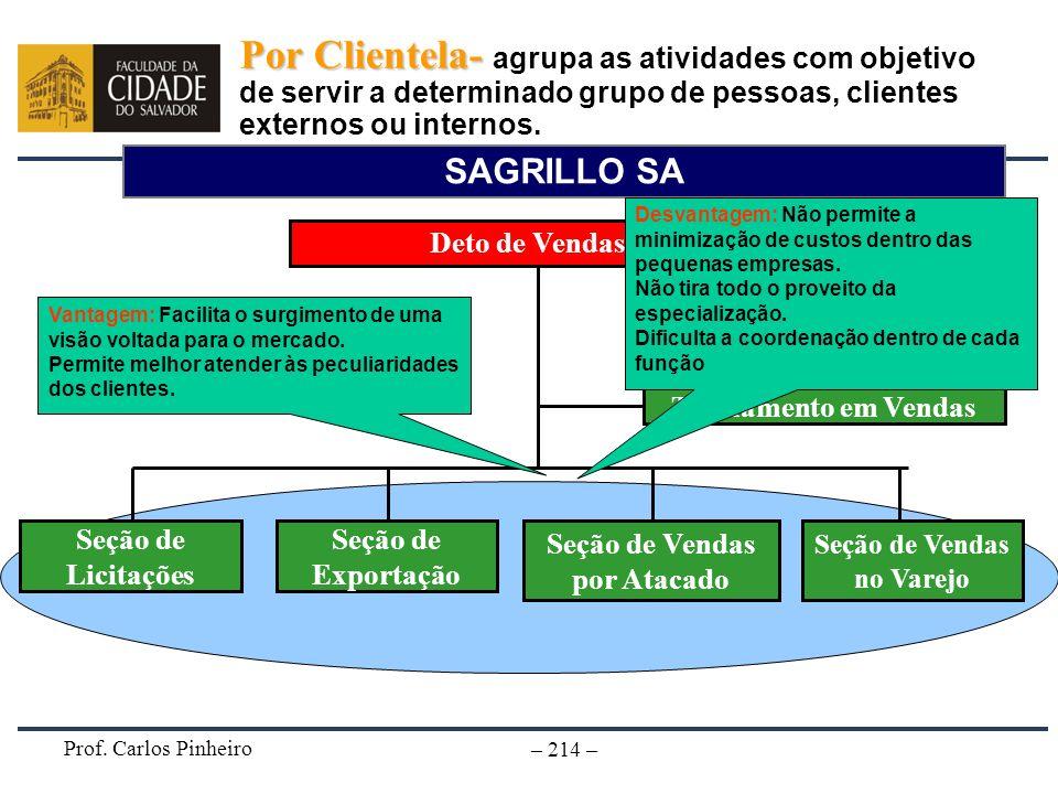 Prof. Carlos Pinheiro – 214 – SAGRILLO SA Deto de Vendas Seção de Vendas por Atacado Seção de Exportação Treinamento em Vendas Seção de Licitações Seç