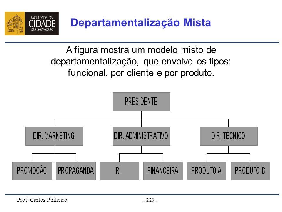 Prof. Carlos Pinheiro – 223 – A figura mostra um modelo misto de departamentalização, que envolve os tipos: funcional, por cliente e por produto. Depa