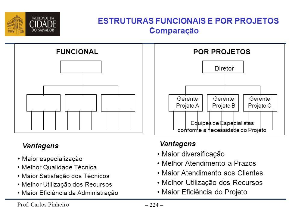 Prof. Carlos Pinheiro – 224 – Diretor Chefe Dept Eletricidade FUNCIONAL Diretor POR PROJETOS Chefe Dept Concreto Chefe Dept Hidráulica Especialistas e