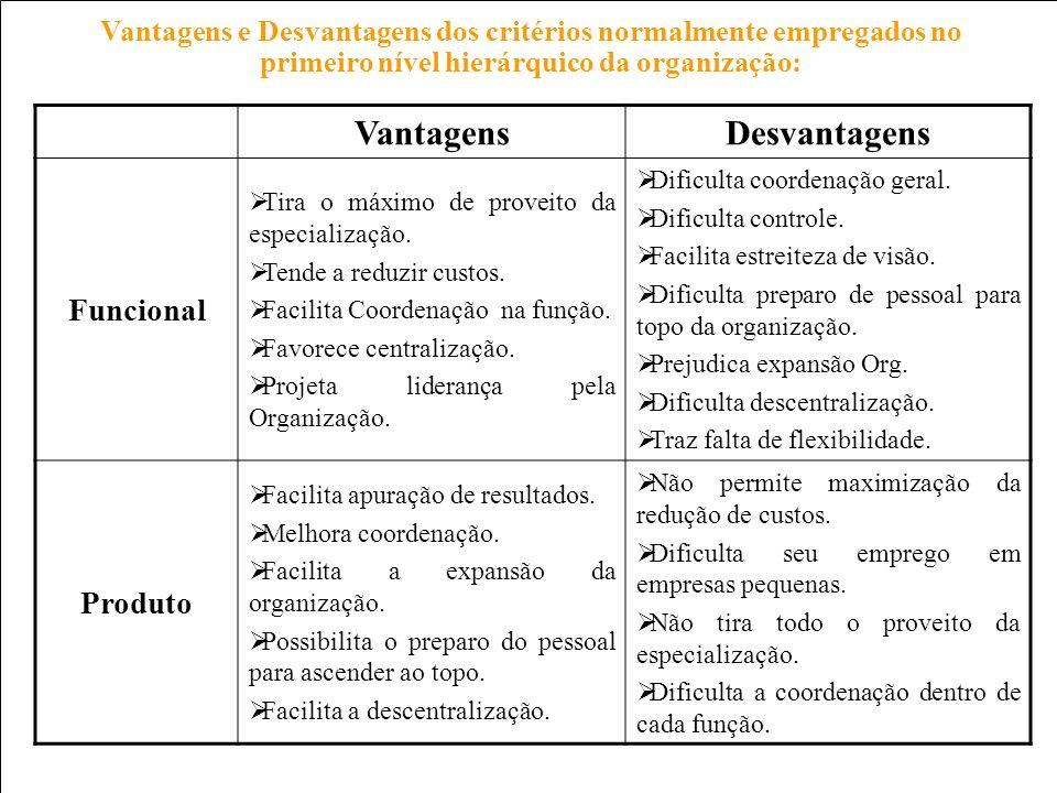 Prof. Carlos Pinheiro – 226 – Vantagens e Desvantagens dos critérios normalmente empregados no primeiro nível hierárquico da organização: CritériosVan