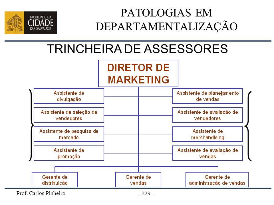 Prof. Carlos Pinheiro – 229 – PATOLOGIAS EM DEPARTAMENTALIZAÇÃO TRINCHEIRA DE ASSESSORES