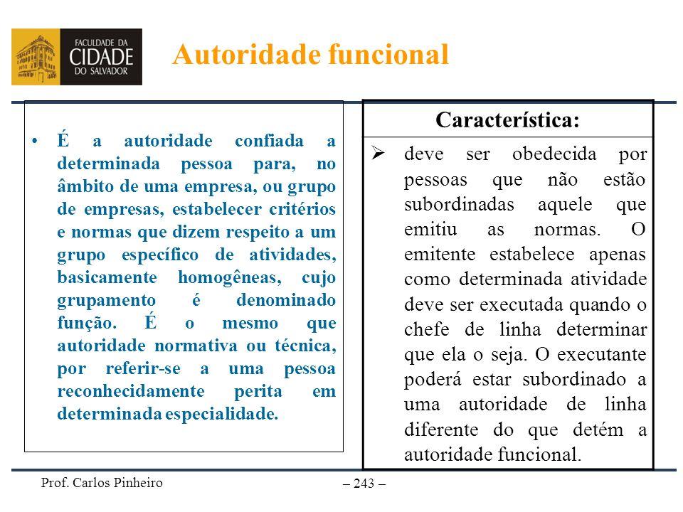 Prof. Carlos Pinheiro – 243 – É a autoridade confiada a determinada pessoa para, no âmbito de uma empresa, ou grupo de empresas, estabelecer critérios