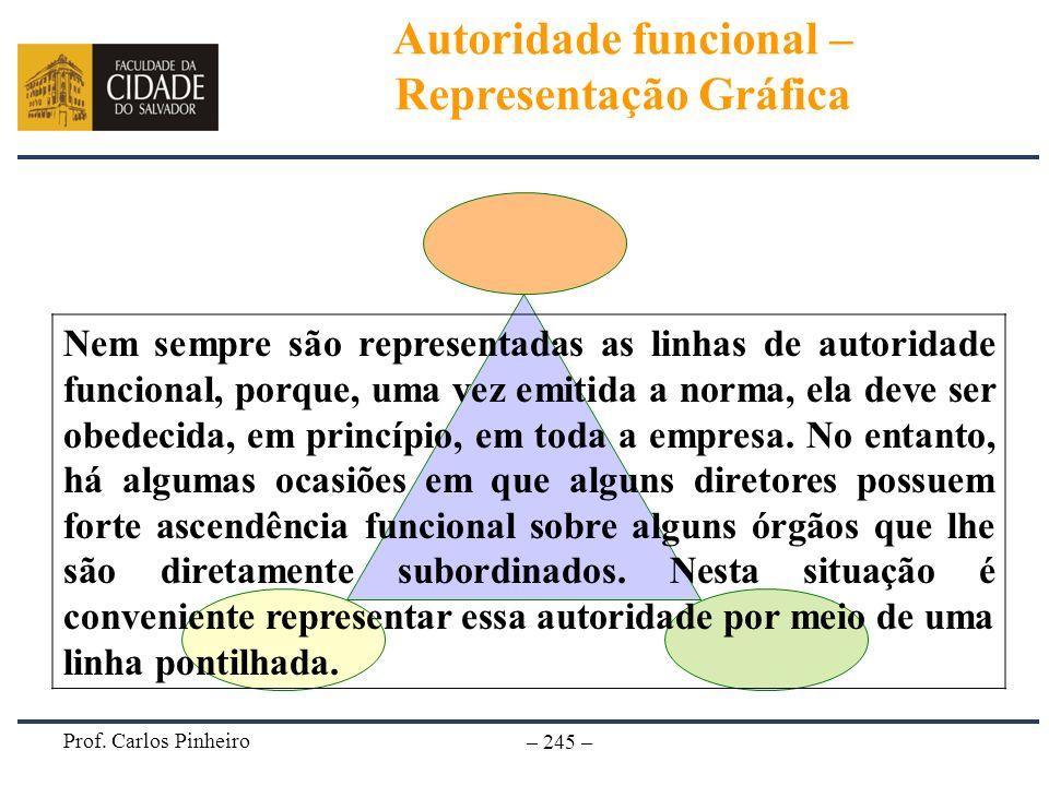 Prof. Carlos Pinheiro – 245 – Nem sempre são representadas as linhas de autoridade funcional, porque, uma vez emitida a norma, ela deve ser obedecida,