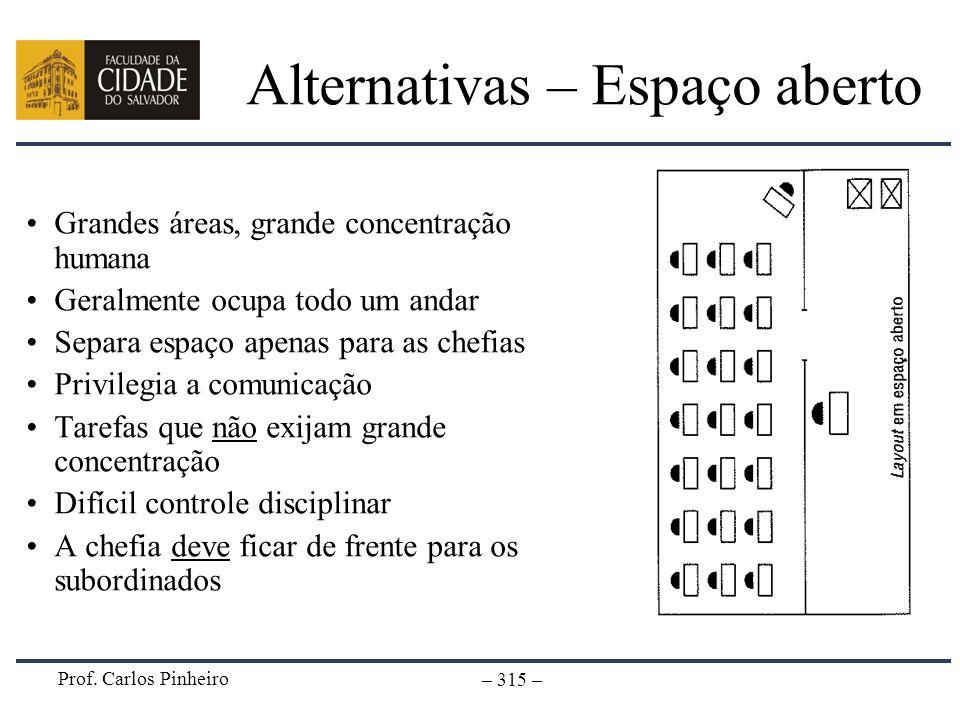 Prof. Carlos Pinheiro – 315 – Alternativas – Espaço aberto Grandes áreas, grande concentração humana Geralmente ocupa todo um andar Separa espaço apen