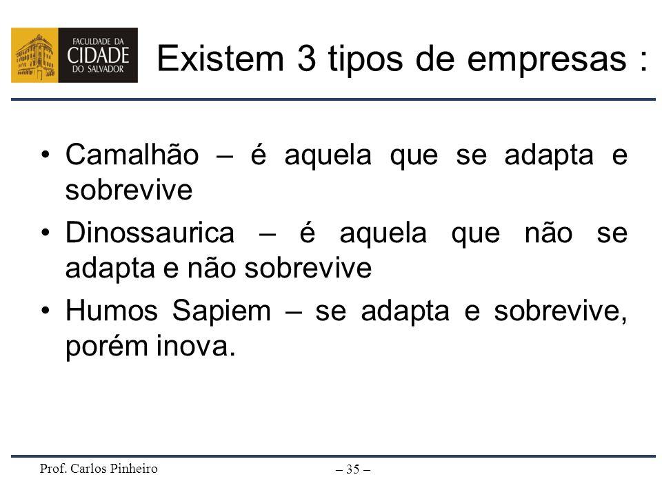 Prof. Carlos Pinheiro – 35 – Existem 3 tipos de empresas : Camalhão – é aquela que se adapta e sobrevive Dinossaurica – é aquela que não se adapta e n
