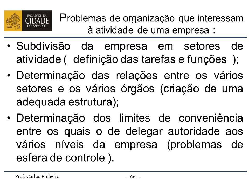 Prof. Carlos Pinheiro – 66 – P roblemas de organização que interessam à atividade de uma empresa : Subdivisão da empresa em setores de atividade ( def
