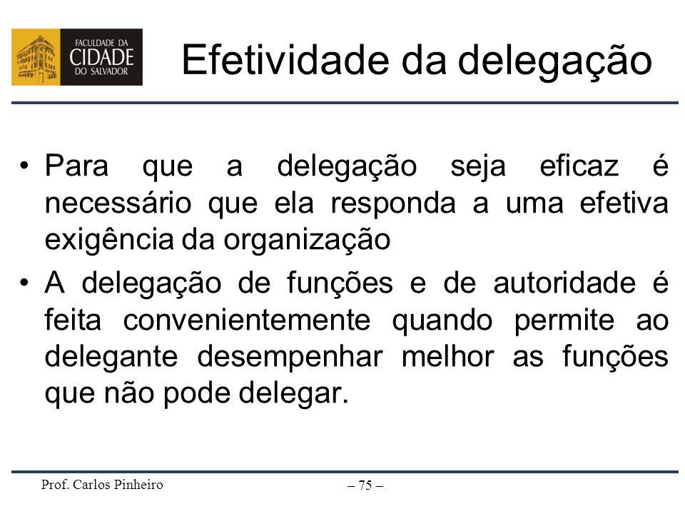 Prof. Carlos Pinheiro – 75 – Efetividade da delegação Para que a delegação seja eficaz é necessário que ela responda a uma efetiva exigência da organi