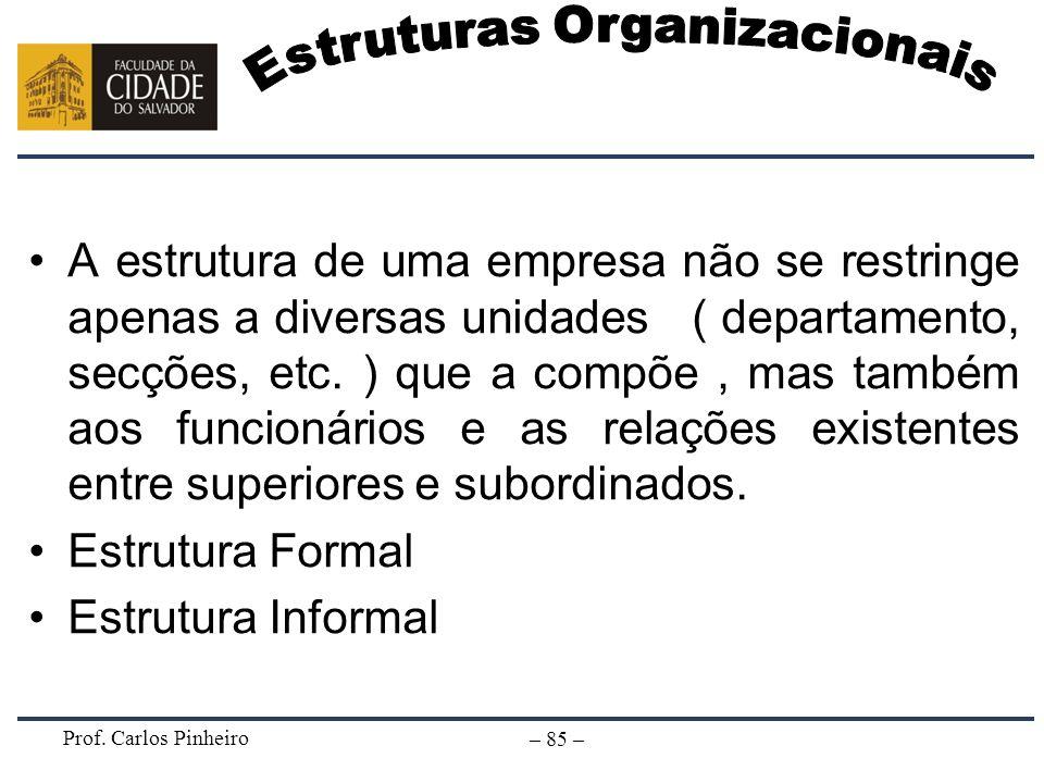 Prof. Carlos Pinheiro – 85 – A estrutura de uma empresa não se restringe apenas a diversas unidades ( departamento, secções, etc. ) que a compõe, mas