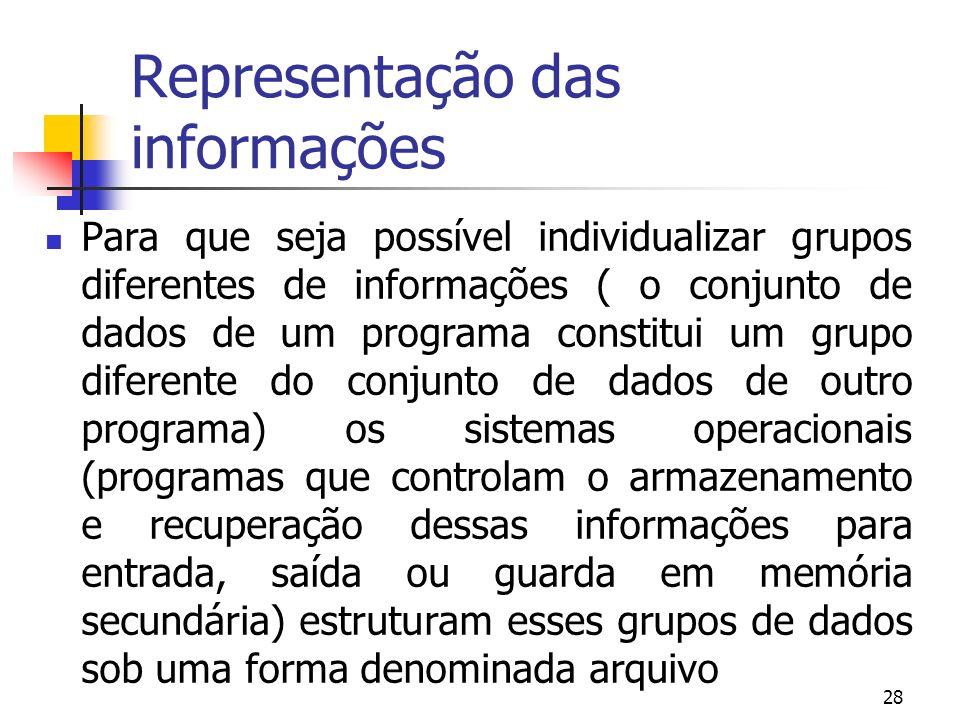 28 Representação das informações Para que seja possível individualizar grupos diferentes de informações ( o conjunto de dados de um programa constitui