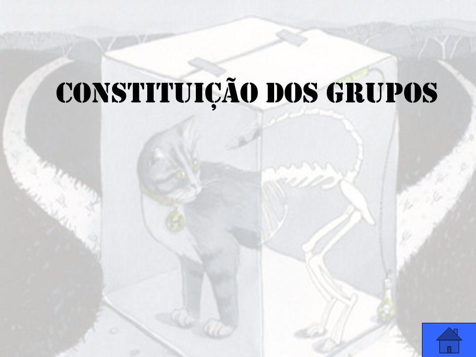 CONSTITUIÇÃO DOS GRUPOS