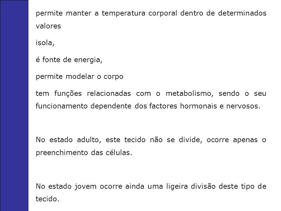 permite manter a temperatura corporal dentro de determinados valores isola, é fonte de energia, permite modelar o corpo tem funções relacionadas com o