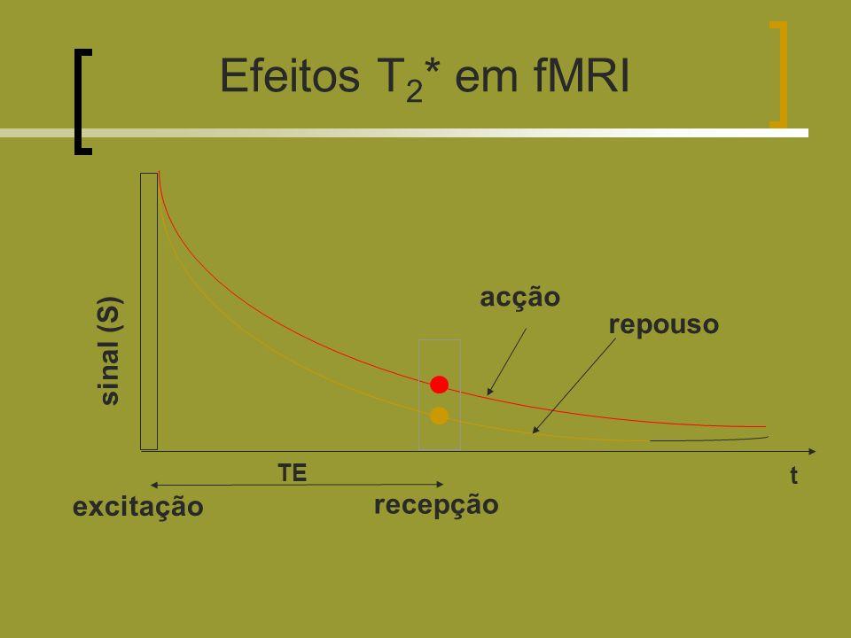 Efeitos T 2 * em fMRI excitação recepção sinal (S) acção repouso TE t