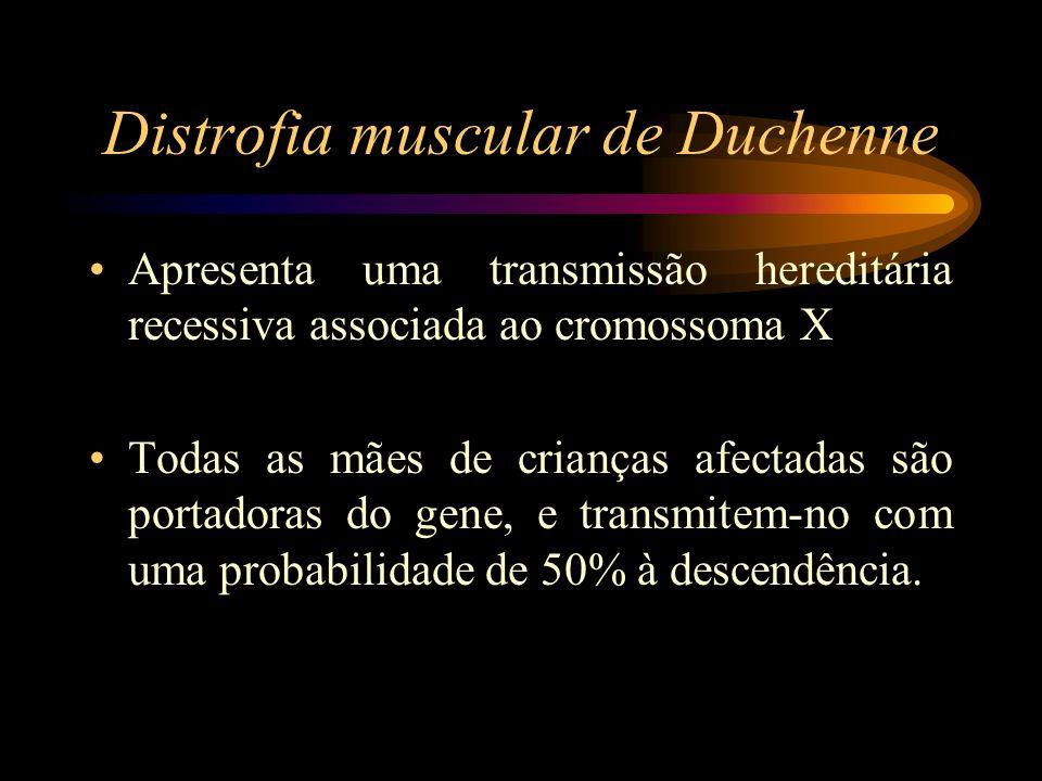 Distrofia muscular de Duchenne Apresenta uma transmissão hereditária recessiva associada ao cromossoma X Todas as mães de crianças afectadas são porta