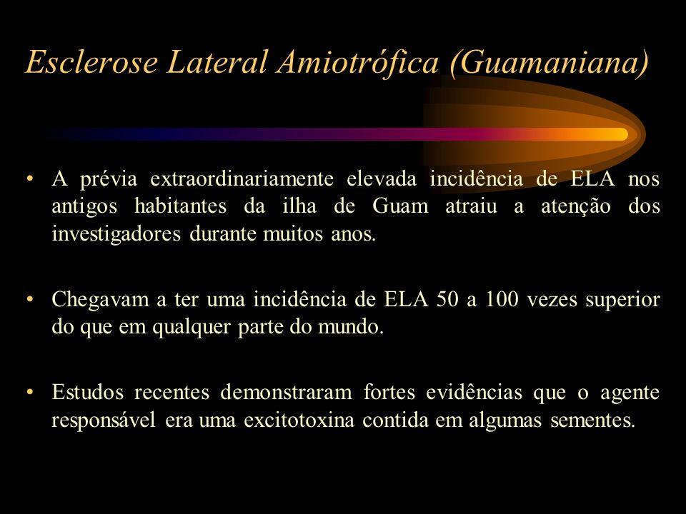 Esclerose Lateral Amiotrófica (Guamaniana) A prévia extraordinariamente elevada incidência de ELA nos antigos habitantes da ilha de Guam atraiu a aten