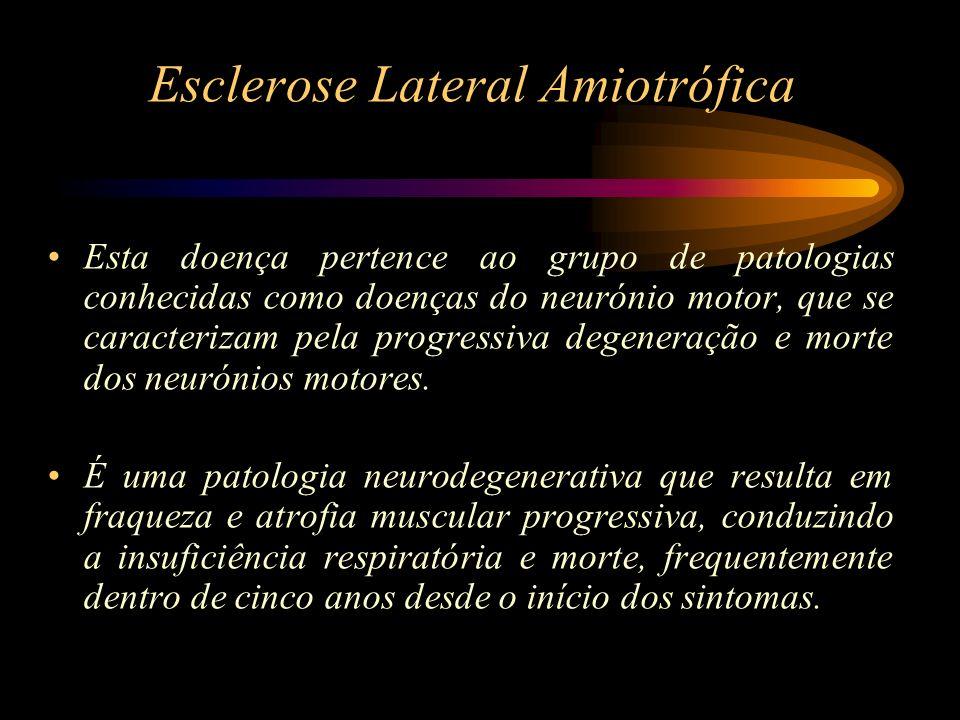 Esclerose Lateral Amiotrófica A ELA confina-se ao sistema motor voluntário, com degeneração progressiva dos tractos cortico-espinais e dos motoneurónios α.