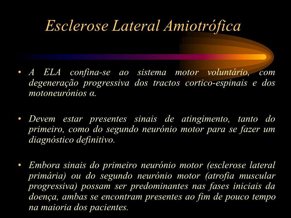 Esclerose Lateral Amiotrófica A ELA confina-se ao sistema motor voluntário, com degeneração progressiva dos tractos cortico-espinais e dos motoneuróni
