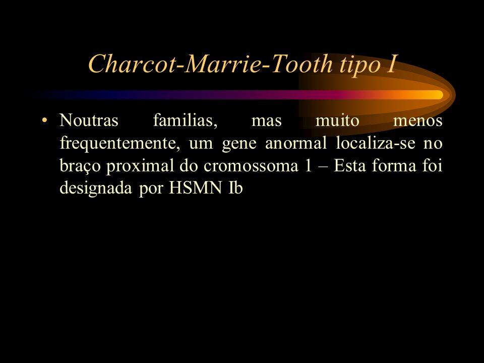 Charcot-Marrie-Tooth tipo I Noutras familias, mas muito menos frequentemente, um gene anormal localiza-se no braço proximal do cromossoma 1 – Esta for