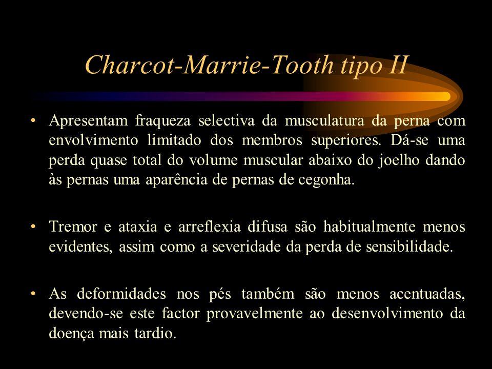 Charcot-Marrie-Tooth tipo II Apresentam fraqueza selectiva da musculatura da perna com envolvimento limitado dos membros superiores. Dá-se uma perda q