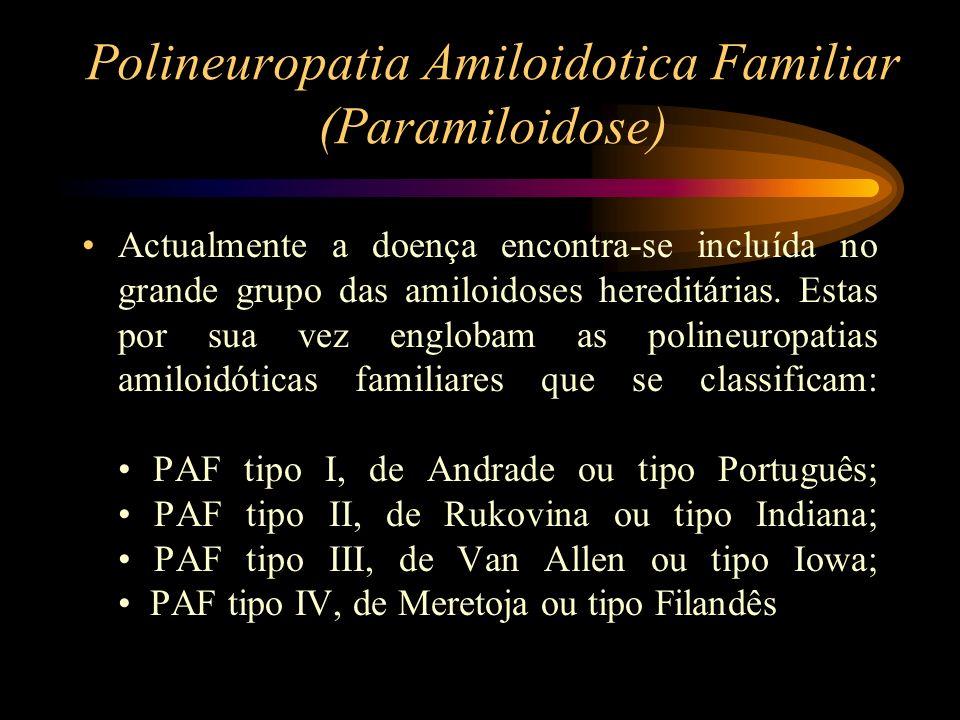 Polineuropatia Amiloidotica Familiar (Paramiloidose) Actualmente a doença encontra-se incluída no grande grupo das amiloidoses hereditárias. Estas por