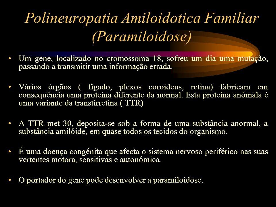 Polineuropatia Amiloidotica Familiar (Paramiloidose) Um gene, localizado no cromossoma 18, sofreu um dia uma mutação, passando a transmitir uma inform