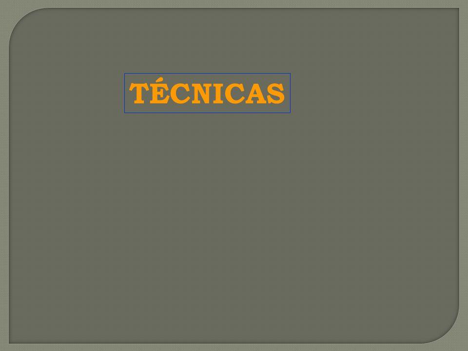 TÉCNICAS