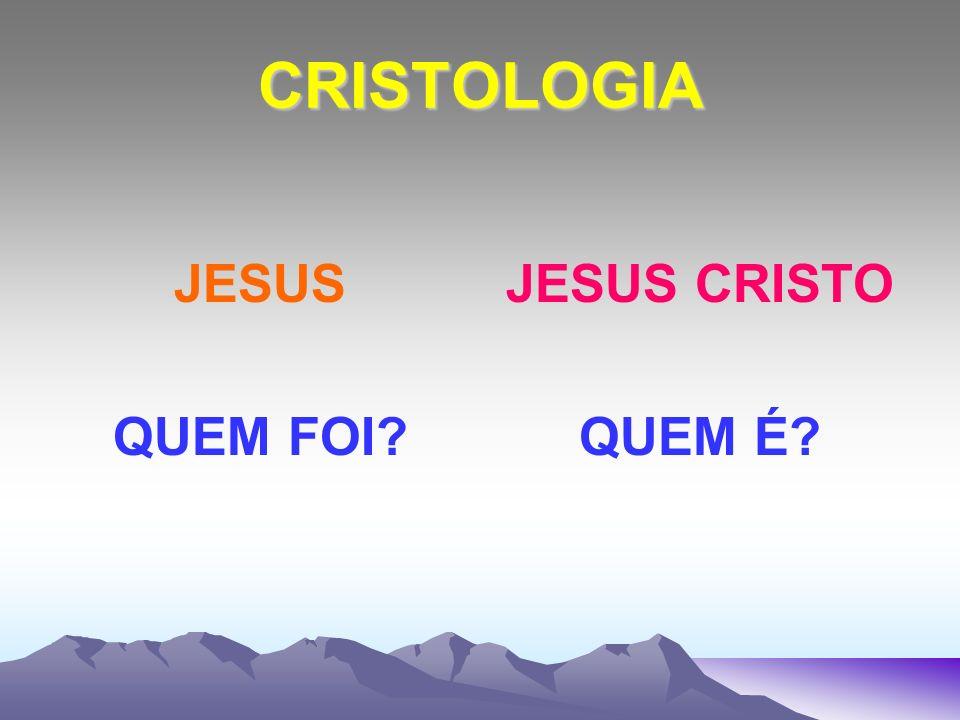 CRISTOLOGIA JESUS FOI UM LEIGO EXISTIA NA ÉPOCA UMA SÓ TRIBO QUE ERA CHAMADA TRIBO SACERTDOTAL.
