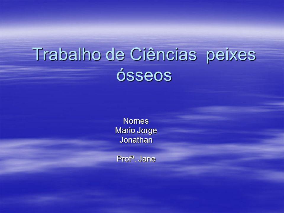 Trabalho de Ciências peixes ósseos Nomes Mario Jorge Jonathan Profª. Jane