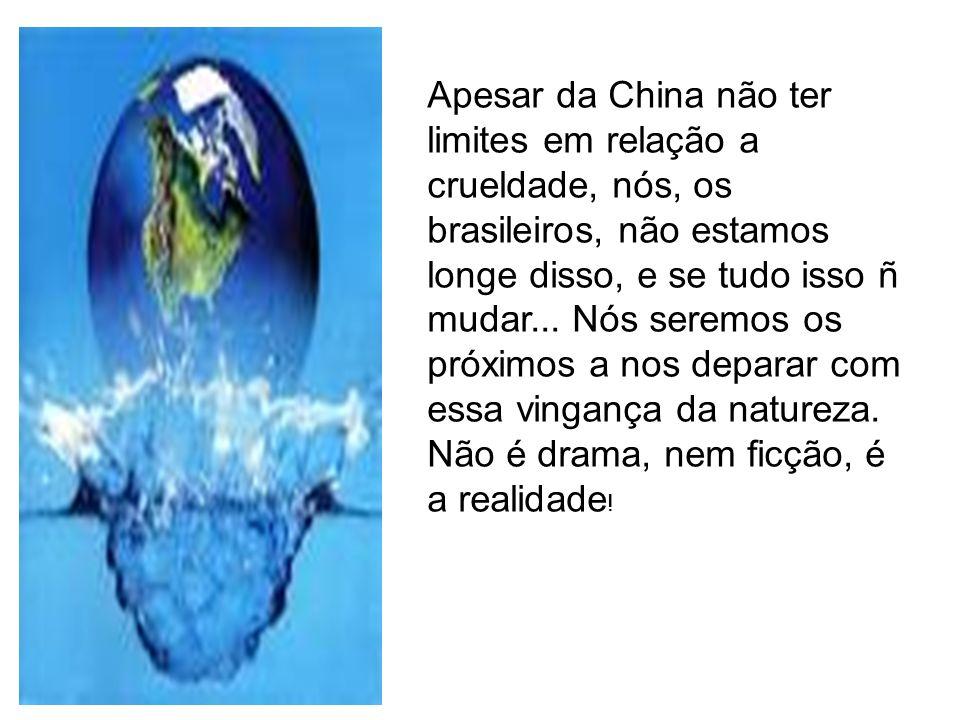 Apesar da China não ter limites em relação a crueldade, nós, os brasileiros, não estamos longe disso, e se tudo isso ñ mudar... Nós seremos os próximo