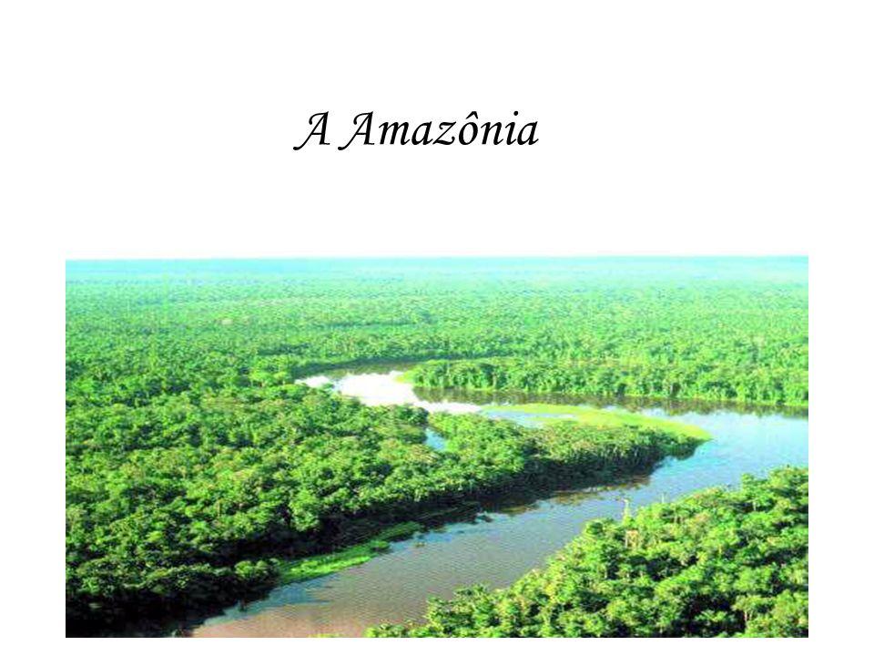 A Floresta Amazônica A Amazônia é uma região natural da América do Sul, definida pela bacia do rio Amazonas e coberta em grande parte por floresta tropical - a Floresta Amazônica - a qual possui 60% de sua cobertura em território brasileiro.