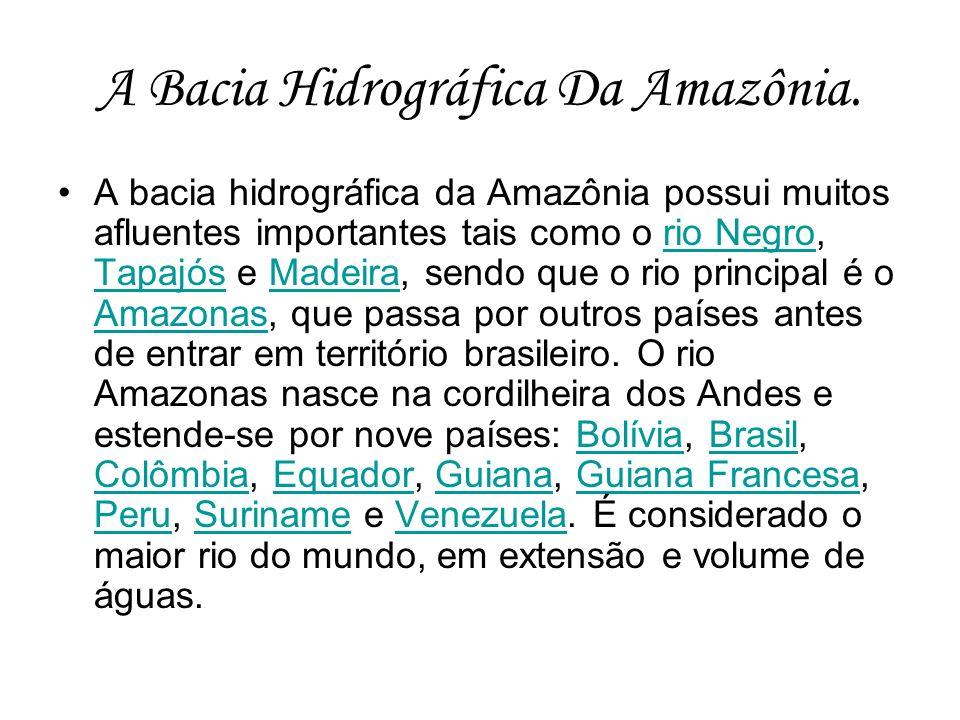 A Bacia Hidrográfica Da Amazônia. A bacia hidrográfica da Amazônia possui muitos afluentes importantes tais como o rio Negro, Tapajós e Madeira, sendo