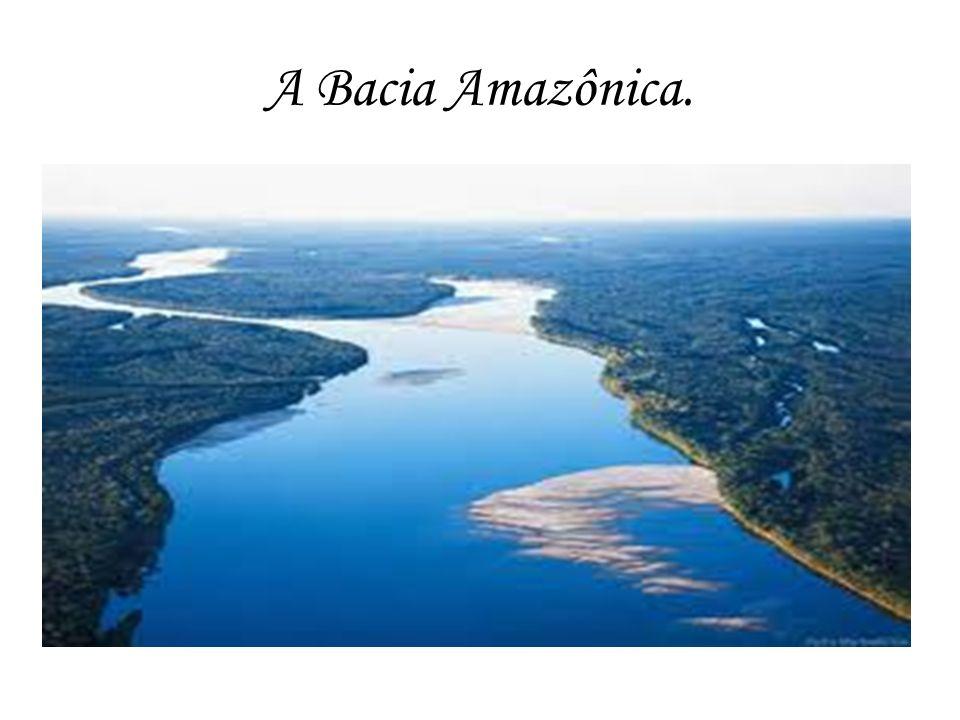 O Rio Amazonas O Rio Amazonas é um grande rio sul- americano que nasce na Cordilheira dos Andes, no lago Lauri ou Lauricocha, no Peru e deságua no Oceano Atlântico, junto à Ilha do Marajó, no Brasil.