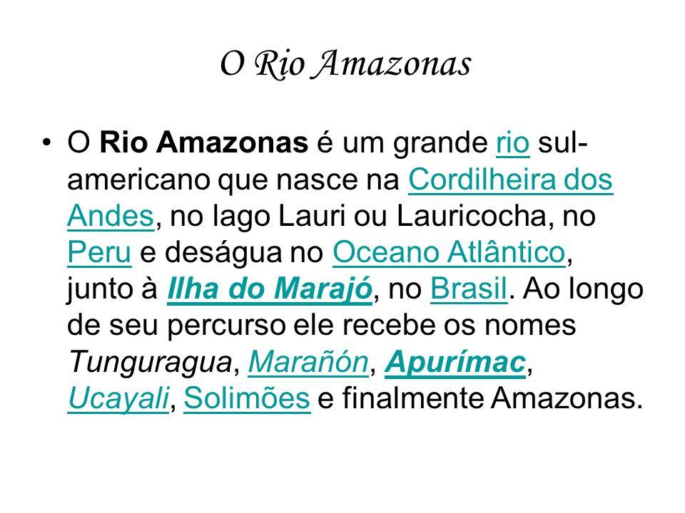 O Rio Amazonas O Rio Amazonas é um grande rio sul- americano que nasce na Cordilheira dos Andes, no lago Lauri ou Lauricocha, no Peru e deságua no Oce