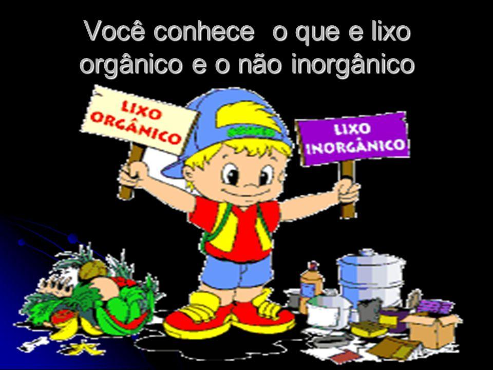 O lixo orgânico e reciclável