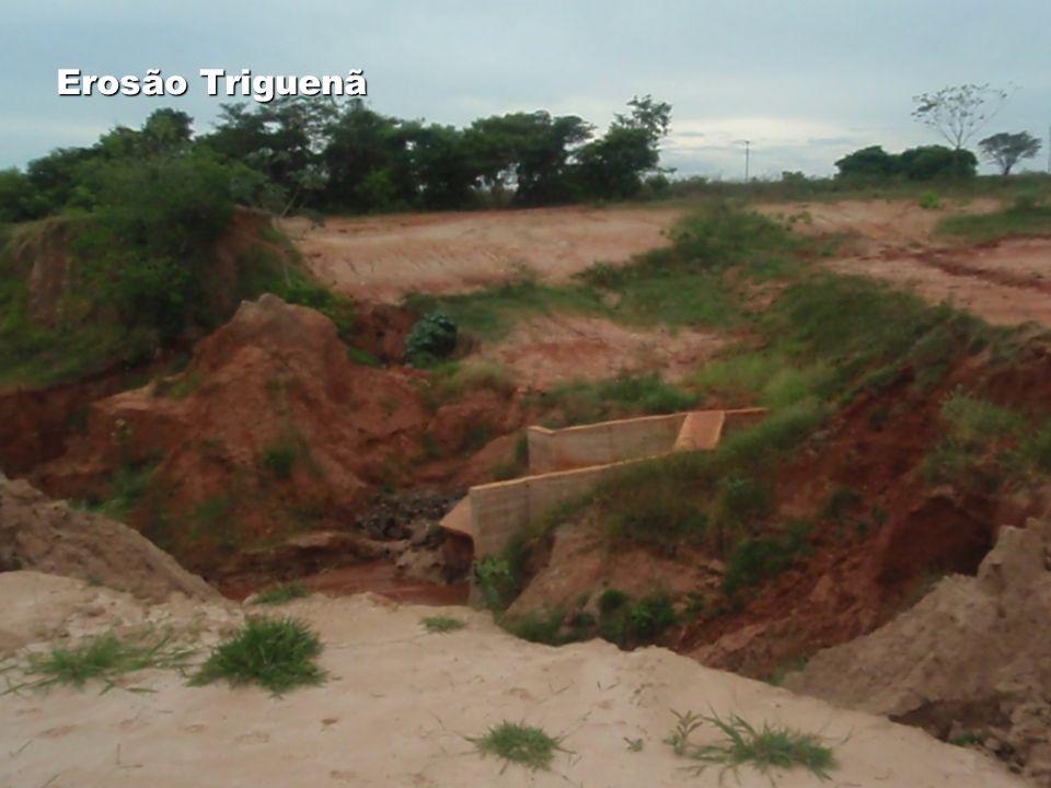 Erosão Triguenã