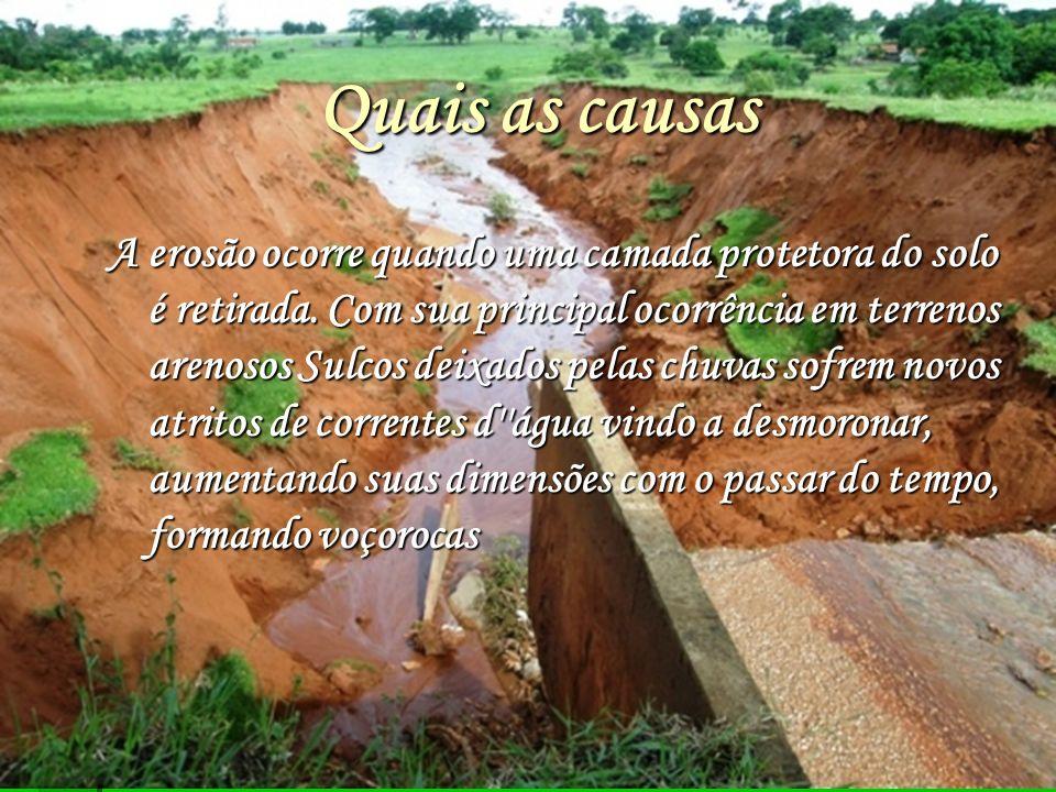 Quais as causas A erosão ocorre quando uma camada protetora do solo é retirada.