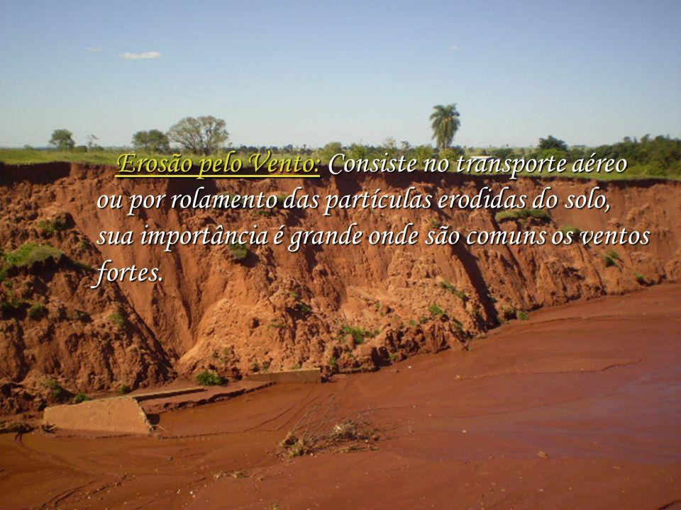 Erosão pelo Vento: Consiste no transporte aéreo ou por rolamento das partículas erodidas do solo, sua importância é grande onde são comuns os ventos fortes.