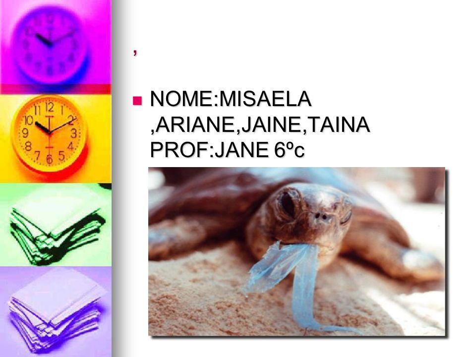 , NOME:MISAELA,ARIANE,JAINE,TAINA PROF:JANE 6ºc NOME:MISAELA,ARIANE,JAINE,TAINA PROF:JANE 6ºc