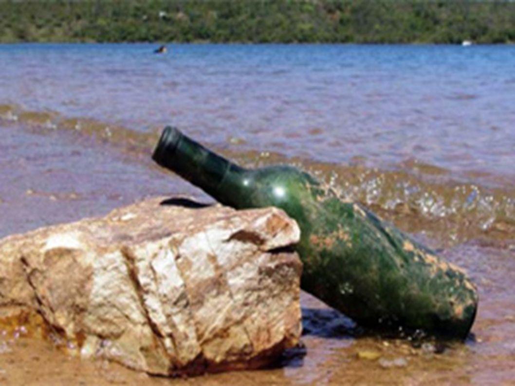 A reciclagem do vidro é de extrema importância para o meio ambiente. Como sabemos, o vidro é produzido através da celulose de determinados tipos de ár